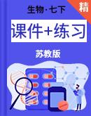 【高效备课】生物苏教版七年级下册同步课件+练习+素材
