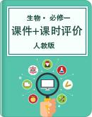 2020-2021学年人教版生物选修1课件与课时素养评价