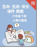 人教川教版《生命·生态·安全》六年级下册 课件教案