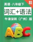 【专题提优特训】牛津深圳(广州)版八年级下册英语单元复习词汇+语法(精讲+练习)