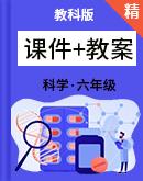 2021年科学教科版六年级下册课件