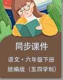 初中语文统编版(五四学制)六年级下册同步课件