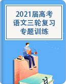 (通用版)2021届高考语文三轮复习:专题训练(含答案)