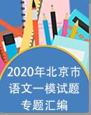 2020年北京中考语文一模专题汇编(教师版+学生版)