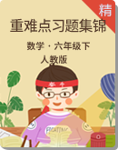 【同步练习】2021年人教新版六年级下册重难点习题集锦(原卷版+解析版)