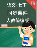人教统编版语文七年级下册 同步课件