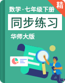 华师大版数学七年级下册 同步练习(含解析)
