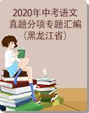 黑龙江省2020年中考语文真题分项专题汇编(原卷版+解析版)