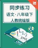 人教统编版语文八年级下册 同步练习