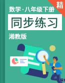 湘教版数学八年级下册 同步练习(含解析)