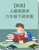 【奥数】人教版六年级下册数学学案(含解析)