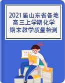 2021届山东省各地高三上学期期末教学质量检测化学试题