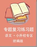 【小升初专题】2021届小升初语文专题复习训练合集资料(Word版,含答案)
