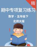 北师大版数学五年级下册期中专项复习练习(含解析)