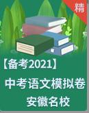 2021年安徽名校 中考语文模拟试题组合卷