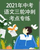 2021年中考语文三轮冲刺考点专练(含答案)