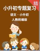【小升初专题】统编版小学语文小升初专题分类复习练习(含答案)