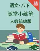 人教统编版语文八年级下册 随堂小练笔