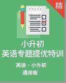 2021年小升初英语专题提优特训(含答案)