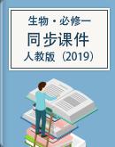 高中生物(人教版)必修第一册同步课件