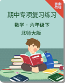 北师大版数学六年级下册期中专项复习练习(含解析)