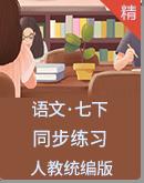 人教统编版语文七年级下册 同步练习