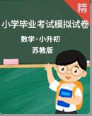 【小升初】苏教版数学小学毕业考试模拟试卷(含答案)