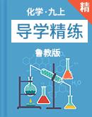 鲁教版化学九年级上册导学精练( 教材解析+典例+练习)