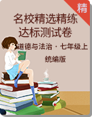道德与法治七年级上册名校精选精练达标测试卷(含解析)