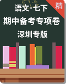 【深圳专版期中备考】人教统编版语文七年级下册专项复习卷