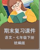初中语文统编版七年级下册期末专题复习课件