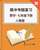 【期中复习】人教版数学七年级下册 期中专题复习(含解析)