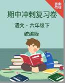统编版六年级语文下册期中冲刺复习卷(含详细解析)