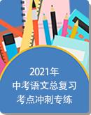 2021年中考语文总复习考点冲刺专练(含答案)