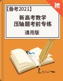 【新高考专用】备考2021新高考数学 压轴题考前专练(含解析)