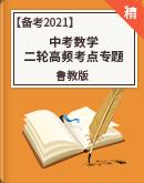 【备考2021】鲁教版中考数学二轮高频考点专题(含答案)