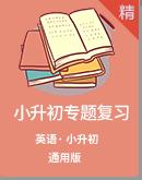 2021年小学英语小升初专项复习练习(含解析)