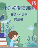 小升初英语专项训练(通用版)(含答案及解析)