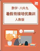 【暑假作业】人教版数学八升九 暑假衔接培优集训(原卷版+解析版)