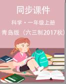 青岛版(六三制2017秋)小学科学一年级上册同步课件