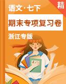 【浙江专版】人教统编版语文七年级下册 期末专项复习卷