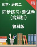 高中化學魯科版(2019)必修第二冊   同步練習+單元測試卷(含解析)
