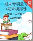 【名师推荐】统编版小学语文三年级下册期末专项复习+期末模拟卷(含答案)