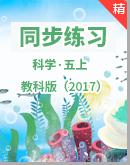 2021年科學教科版(2017)五年級上冊同步練習+單元測試卷