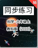 【高效备课】2021年科学教科版(2017)六年级上册同步练习