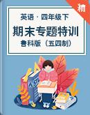 鲁科版(五四制)四年级下册英语期末专项训练(含答案)