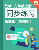 鲁教版(五四制)澳门葡京app下载九年级上册 同步练习(含答案)