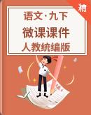 人教统编版语文九年级下册 微课课件