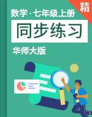华师大版数学七年级上册 同步练习(含解析)