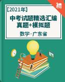 2021年中考数学试题精选汇编 真题+模拟题(广东省适用)